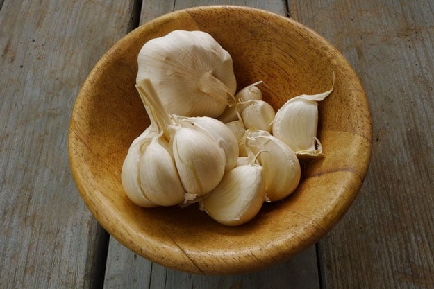 Garlic | Kidney Infection Treatment | Help Cure Yourself Naturally