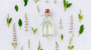 Exploring the Benefits of Citronella Essential Oil