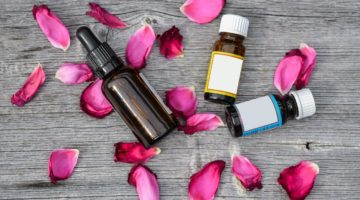 Cedarwood Essential Oil Benefits and Uses