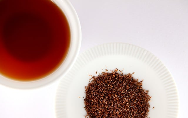 rooibos tea for boosting the immune system