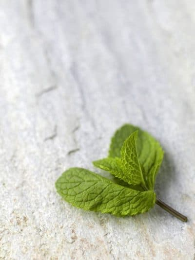Peppermint for IBS