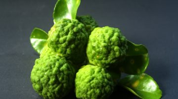 8 Benefits of Using Bergamot Essential Oil