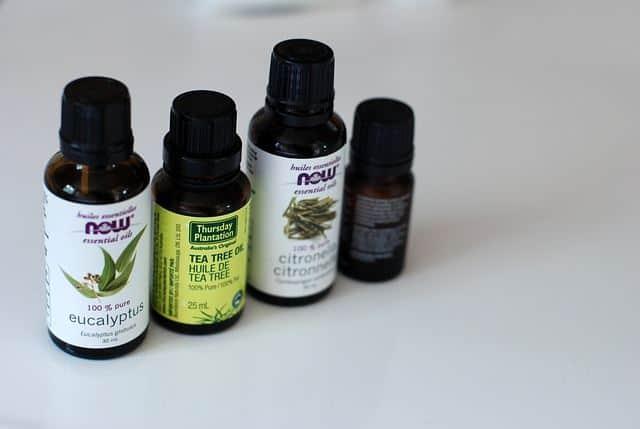 an effective treatment for asthma is eucalyptus oil
